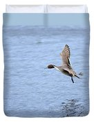 Northern Pintail Duck Duvet Cover