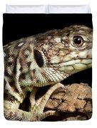 Ocellated Lizard Timon Lepidus Duvet Cover