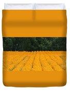 Oregon Orange Field Panoramic Duvet Cover