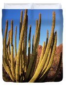 Organ Pipe Cactus Natl Monument Duvet Cover
