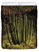 Organ Pipe Cactus  Duvet Cover