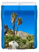 Palm Oasis On Borrego Palm Canyon Trail In Anza-borrego Desert Sp-ca Duvet Cover