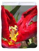 Parrot Tulip Named Rococo Duvet Cover