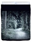 Path In Dark Forest Duvet Cover by Elena Elisseeva