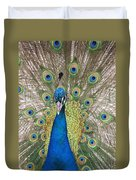Peacock Full Plumage Duvet Cover