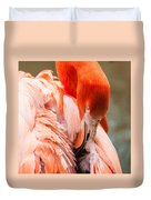Pink Flamingo At A Zoo In Spring Duvet Cover