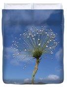 Pipewort Grassland Plants Blooming Duvet Cover