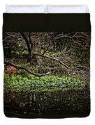 Pond Reflection Duvet Cover