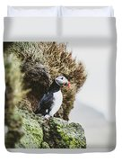 Puffins On The Islet Of Mykines, Faroe Duvet Cover