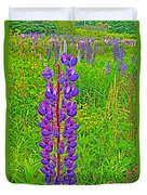 Purple Lupine On Campobello Island-nb Duvet Cover