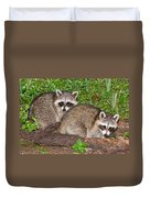 Raccoons Duvet Cover