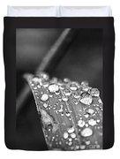 Raindrops On Grass Blade Duvet Cover