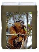 Red Colobus Monkey Duvet Cover