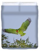 Red-crowned Parrot Duvet Cover