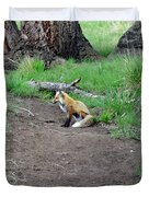 Red Fox In Yellowstone Duvet Cover