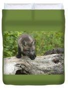 Red Fox Kit Duvet Cover