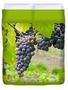Red Wine Vineyard 2 Duvet Cover
