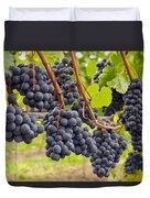 Red Wine Vineyard 4 Duvet Cover