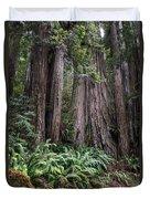 Redwood Duvet Cover