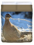 Ring Neck Hen Duvet Cover