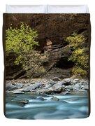 River Flowing Through Rocks, Zion Duvet Cover