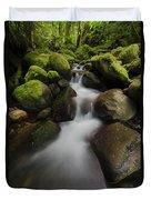 Ruckel Creek  Oregon, United States Duvet Cover