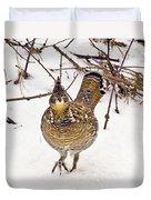Ruffed Grouse Walking On Snow - Horizontal Duvet Cover