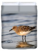 Sanderling Duvet Cover