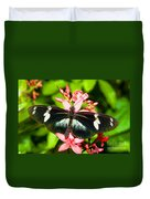 Sapho Longwing Butterfly Duvet Cover