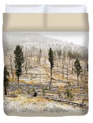 Sawback Burn, On Bow Valley Parkway Duvet Cover