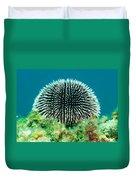 Sea Urchin Duvet Cover