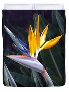Seaport Bird Of Paradise Duvet Cover