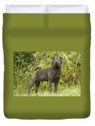 Shar Pei Dog Duvet Cover