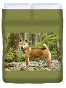 Shiba Inu Dog Duvet Cover