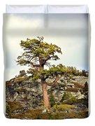 Sierra Landscape Duvet Cover