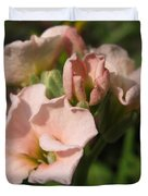Single Peach Stocks From The Vintage Mix Duvet Cover