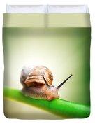 Snail On Green Stem Duvet Cover by Johan Swanepoel