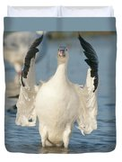 Snow Goose Flapping Skagit River Duvet Cover