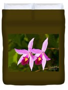 Sophronitis Orchid Duvet Cover