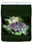 Spicebush Swallowtail Papilio Troilus Duvet Cover