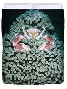 Spotted Porcelain Crab In Anemone Duvet Cover