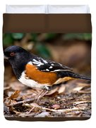 Spotted Towhee Pipilo Maculatus Duvet Cover