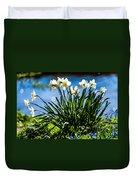Spring Daffodils. Park Keukenhof Duvet Cover by Jenny Rainbow