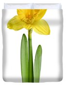 Spring Yellow Daffodil Duvet Cover