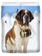 St. Bernard Dog Duvet Cover