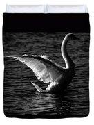 Swan Wingspan Duvet Cover
