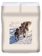 Team Of Sleigh Dogs Pulling Duvet Cover