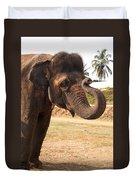 Temple Elephants Maharaja's Palace India Mysore Duvet Cover