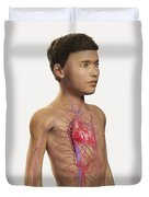 The Cardiovascular System Pre-adolescent Duvet Cover