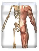 The Human Skeleton And Muscular System Duvet Cover